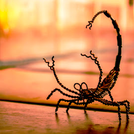 Jenna's Scorpion by Hannah Maison - Artistic Objects Other Objects ( wire, copper, tile, scorpion, sun,  )