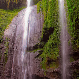 Waterfall by Benny Prayitno - Nature Up Close Rock & Stone