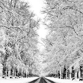 by Richard Ashton - Landscapes Weather