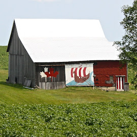 Viking Barn in Field by Ernie Easter - Buildings & Architecture Other Exteriors