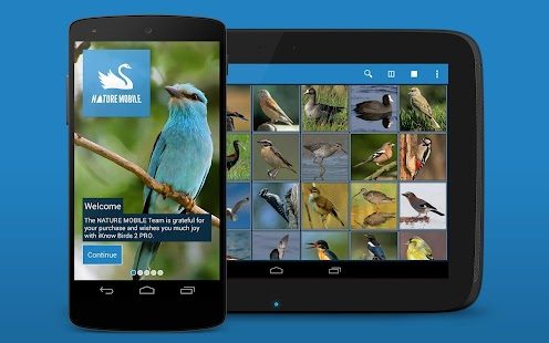 iKnow Birds 2 PRO - Europe- screenshot thumbnail
