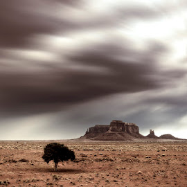 On the road by Ivan Bertusi - Landscapes Deserts ( clouds, desert, america, three, west )