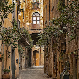 Winding street in Orvieto by Lynn Andrews - Buildings & Architecture Other Exteriors ( winding street, europe, street, orvieto, italy, cobblestone )