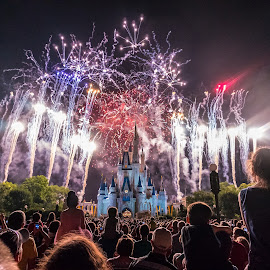 Fireworks at the Magic Kingdom by Ronny Lee - Landscapes Travel ( night photography, magic kingdom, fireworks, disneyworld, nightscape )