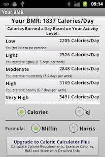 Basal Metabolic Rate - screenshot