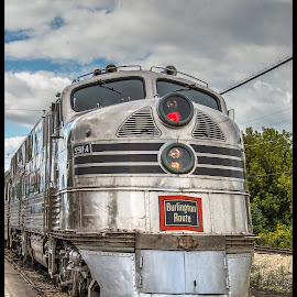 Silver Pilot by Tony Roma - Transportation Trains ( illinois, union, train, museum, silver pilot )