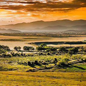 Morning by MIhail Syarov - Landscapes Prairies, Meadows & Fields ( field, rising, sunrise, morning, rural, sun, early, bulgaria )