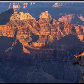Grand Canyon 657-2.jpg