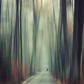 surreal walk by Adrian  Limani - Digital Art Places ( fineart, creative, forest, road, surreal, woods, walk )