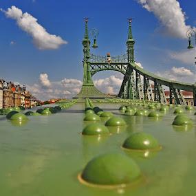 Liquid - Ponte della Libertà (Szabadság híd) - Budapest by Luigi Alloni - Buildings & Architecture Bridges & Suspended Structures ( bridge budapest green perspective liquid )