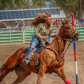 Pole Bending by Jim Shafer - Sports & Fitness Rodeo/Bull Riding ( fallon, cowgirls, students, horses, jim shafer, high school, cowboys, rodeo, nv.western images, western )