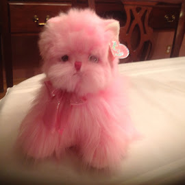 Pinky by Terry Linton - Artistic Objects Toys (  )