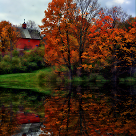 Reflections of Autumn by Janet Lyle - Landscapes Waterscapes ( autumn, foliage, fall )