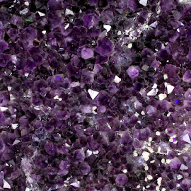 Amethyst by Tamsin Carlisle - Nature Up Close Rock & Stone ( geology, crystals, semiprecious, purple, geode, mineral, amethyst, quartz, rock,  )
