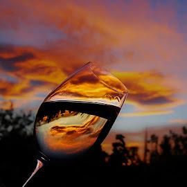 Upside down by Anand Jalkhare - Landscapes Sunsets & Sunrises ( reflection, sky, nature, sunset, landscape )