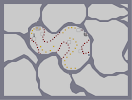 Thumbnail of the map 'Cellular'