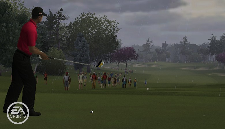Tiger Woods PGA Tour Online