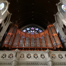 Organ Pipes at St. Colman's Cathedral by Deborah Russenberger - Buildings & Architecture Places of Worship ( organ, cathedral, pipes )