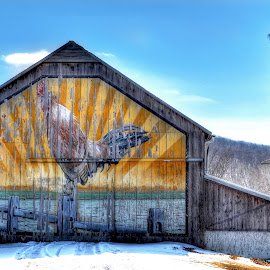 Rooster Barn of Mt. Joy, Pa. by Mike Roth - Buildings & Architecture Other Exteriors