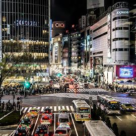 Shibuya Crossing, Tokyo by Steve Griffiths - City,  Street & Park  Neighborhoods ( car, shibuya, crossing, tokyo, night, people, city,  )