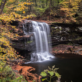 Harrison Wright Falls by Michael Sharp - Landscapes Waterscapes ( luzerne county, pa, fall foliage, waterfall, pennsylvania, united states, harrison wright falls 27', ricketts glen state park )
