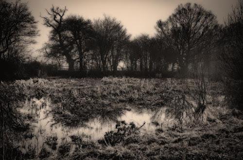 <p> Bodiam Castle MIll Pond ©jamiegriffiths 2014</p>