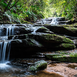 Leura cascade by Clement Bardon - Nature Up Close Water