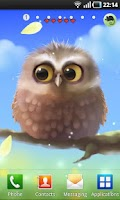 Screenshot of Little Owl