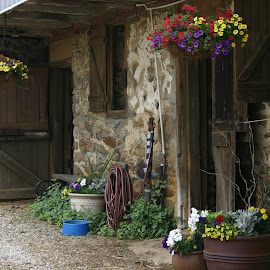 Day at the Barn by Alvin Simpson - Buildings & Architecture Other Exteriors ( canon, doors, hose, barn, brown, rebel, pots, flowers )