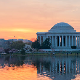 Jefferson Memorial at Sunrise by Fred Walker - Buildings & Architecture Statues & Monuments ( jefferson memorial )