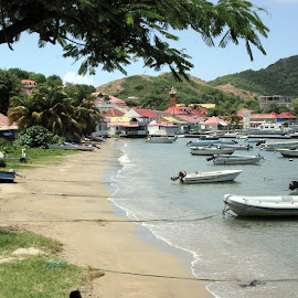 Iles des Saintes by William Graf - Transportation Boats ( boats, french, borg. fishing, iles de saintes, caribbean )