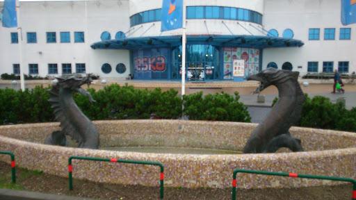 Smoki Przed Aquaparkiem