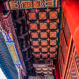 Forbidden Ciji Beijing by Eddy Tan - Buildings & Architecture Architectural Detail ( forbiddden city, travel, beijing, china, pillars,  )