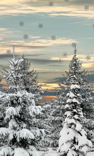Winter Snow Trees 3D Trial LWP