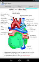 Screenshot of Anatomy Heart Lecture