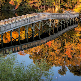 Still waters by Gene Myers - Buildings & Architecture Bridges & Suspended Structures