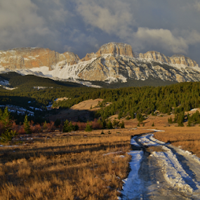 Sawtooth Road by Don Evjen - Landscapes Mountains & Hills ( clouds, pines, mountains, montana, cliff, snow, forest, sunrise, road, rugged,  )