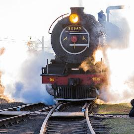 Reefsteamers by Geoff Ferrer - Transportation Trains ( transport, steam engine railway ·     steam train ·     train ·     railway tracks ·, transportation,  )