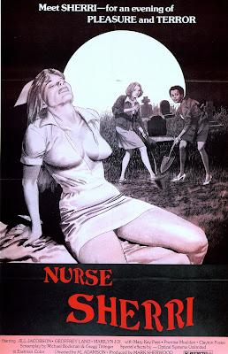 Nurse Sherri (1978, USA) movie poster