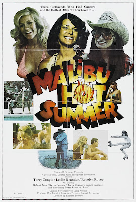 Sizzle Beach, U.S.A. (aka Malibu Hot Summer) (1986, USA) movie poster