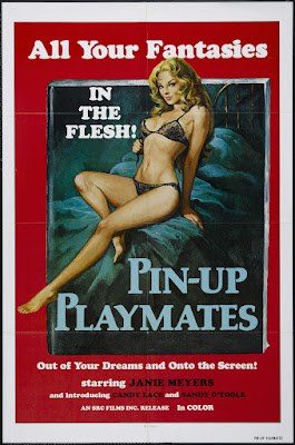 Pin-up Playmates (Blutjunge Masseusen) (1972, Switzerland) movie poster