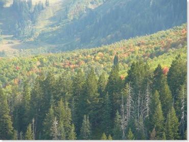 Can you spot Sundance's ski slopes