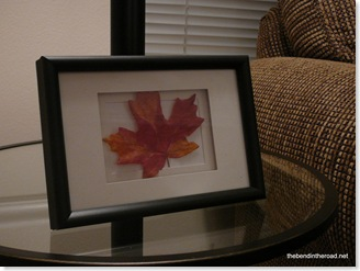 Framed Maple Leaf-1