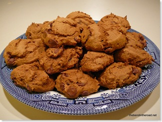 Weight Watchers 1 Point Pumpkin Cookies