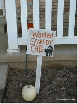 Wanted Scaredy Cats!