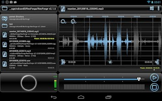 Screenshot of RecForge Lite - Audio Recorder