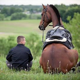 Sitting horse by Piotr Dejneka - Animals Horses ( natura, charming, rider, sweet, sitting, friends, horse, friendship, conversation, rest, portrait, talk )