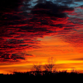 Kansas Sky by John Hale - Landscapes Sunsets & Sunrises