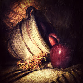 by Sanjas Foto - Artistic Objects Still Life