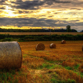 golden time glow by Ray Heath - Landscapes Prairies, Meadows & Fields ( field, derbyshire. uk, hay, golden time, harvest,  )
